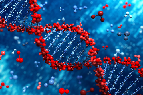 ddd1508_DNA_0.jpg