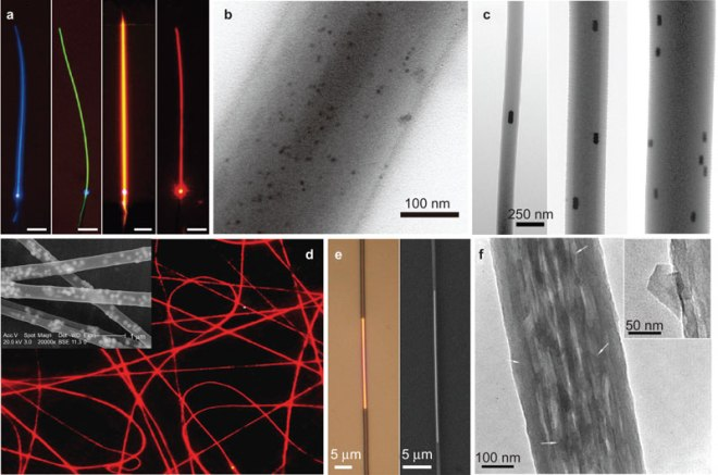 Figure-1-Microscope-images-of-the-functionalized-polymer-nanofibers-a-Typical