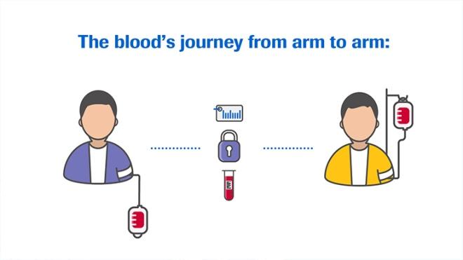 blood-supply-infographic_web_teaser_740.jpg