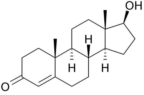 Testosterone.jpeg