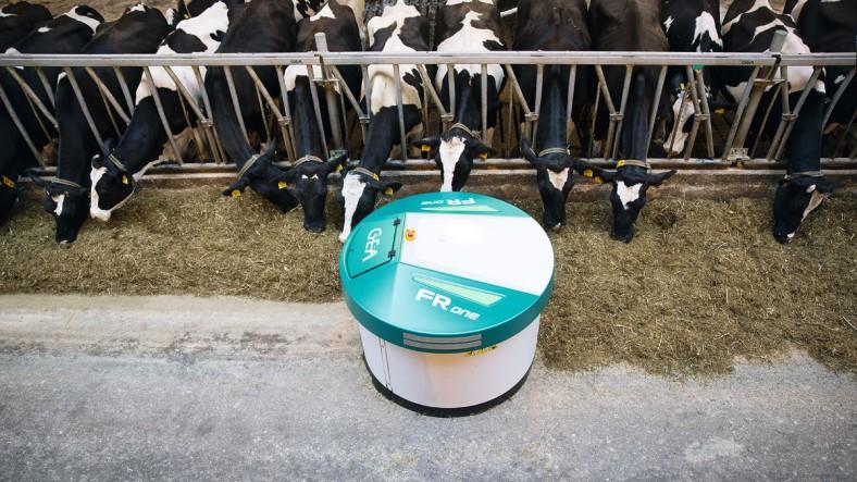 DairyFarming-FRone-1_tcm11-34076.jpg