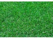 Global Sports Turf Industry Research Report, Growth Trends and Competitive Analysis 2013-2025