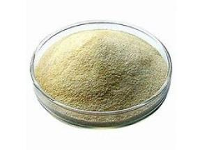 global, Alginates & Derivatives, market report, history and forecast, 2013-2025