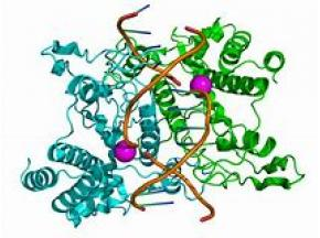 Whole Agriculture Enzyme Market Size, Share, Development by 2025 - QY Research, Inc.